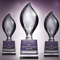 The Peoples Choice Awards nominees